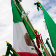 Постер, плакат: Mexican flags
