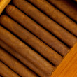 Cigars — Stock Photo #6047980