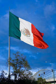 Big Mexican Flag 1 — Stock Photo