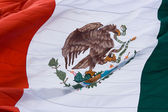 Mexican flag, close up. — Stock Photo