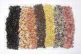豆 2 のカーペット — ストック写真