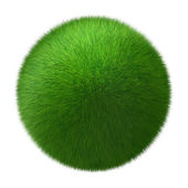 Ball of grass — Stock Photo