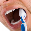 Stock Photo: Mounth and toothbrush 2
