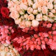 Stock Photo: Bunch of roses 3