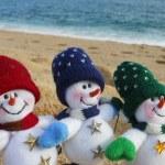 Family s winter vacation — Stock Photo