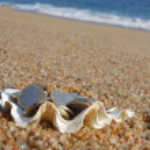 Treasure on the beach — Stock Photo