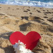 Sea, heart and seashell — Stock Photo