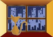 Kat in venster. — Stockvector