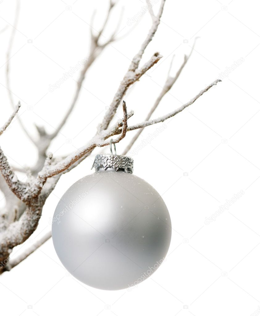 White christmas bauble on frozen branch  Stock Photo #6117844
