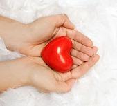 心と手 — ストック写真