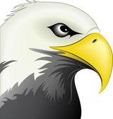 Eagle Face — Stock Vector