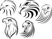 Eagle Face set 1 — Stock Vector
