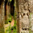 Ruins of the temples, Angkor Wat, Cambodia — Stock Photo #6425218