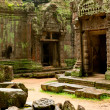 Ruins of temples, Angkor Wat, Cambodia — Stock Photo #6425444