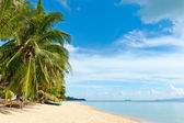 Tropical beach — Stockfoto