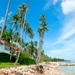 Beautiful house with palm trees on beach — Stock Photo #6477384