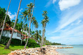 Beautiful house with palm trees on the beach — Stock Photo