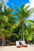 Liegestühle auf perfekte tropischen weißen sandstrand — Stockfoto