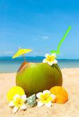 与棕榈海滩和异国情调 coctail — 图库照片