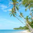 Tropical beach - vacation background - Stock Photo