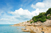 Beach at Seychelles - vacation background — Stock Photo