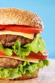 Double cheeseburger — Stock Photo