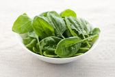 Fresh spinach — Stock Photo