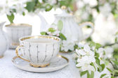 Tea in the blossoming garden — Stock Photo