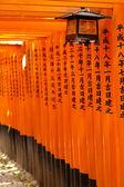 Inari Pillars — Stock Photo