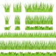 Stock Vector: Green grass