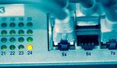 Ethernet plug — Stock Photo