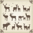 Vintage set of animals into frame - Imagen vectorial