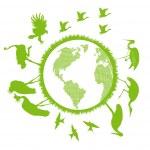 Birds set around world vector background- ecology concept — Stock Vector