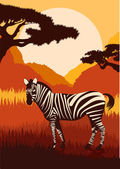 Animated zebras in African foliage — Stock Vector