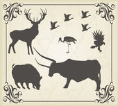Vintage medieval animals vector set — Stock Vector