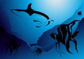 Океан Акула охоты для рыб — Cтоковый вектор