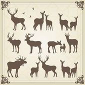 Vintage set of animals into frame — Stock Vector