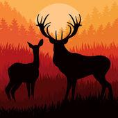 Animerade rådjur i vild natt skog bladverk illustration — Stockvektor