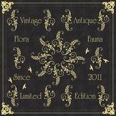 Vector vintage de colección de ilustración de marcos y elementos — Vector de stock