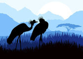 Animated crane couple in wild nature landscape illustration — Stock Vector