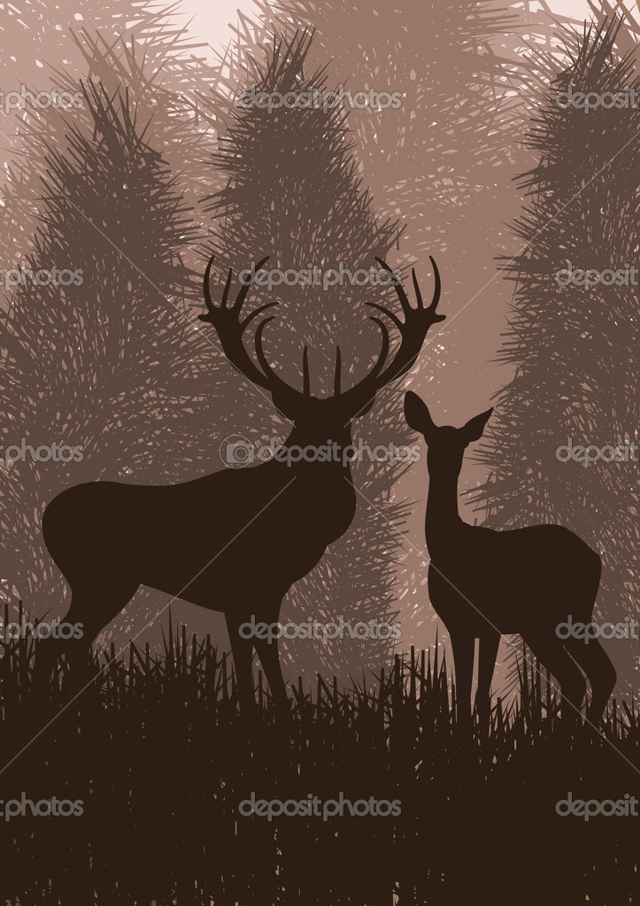 Animated deer in wild night forest foliage illustration vector — Stock Vector #6745056