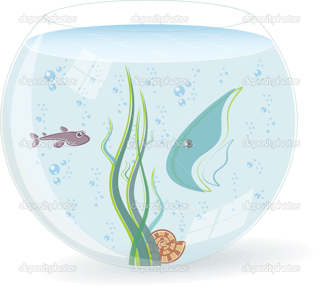 Fishbowl with fishes, the seaweed and the shell. Vector Illustration. — Stock Vector #6054777