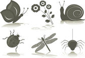 Isolated icons of insects, vector illustration — Stock Vector