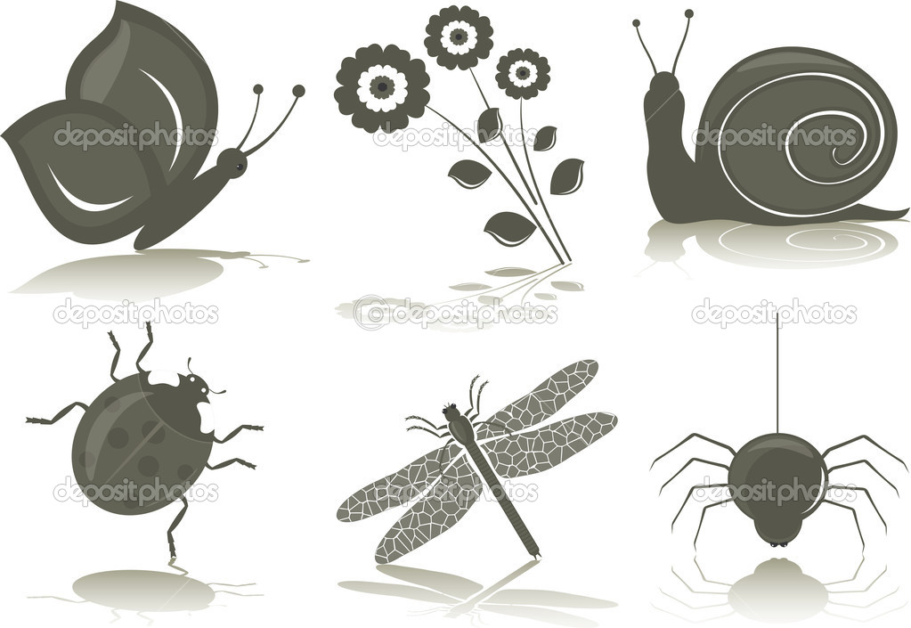 Isolated black-white icons of insects. Vector Illustration.  Stock Vector #6068181