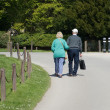 Stock Photo: Old Couple Walking