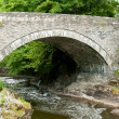 Bridge at Cenarth in Wales — Stock Photo