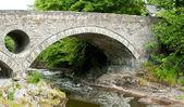 Bridge at Cenarth in Wales — Stock Photo
