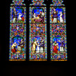 Ely Stained Glass Window — 图库照片
