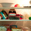 Fridge Content — Stock Photo