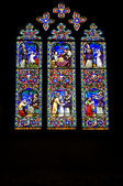 Ely Stained Glass Window — Stock Photo